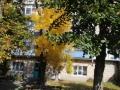 2-pasternak-kateryna-12-rokiv-fotostudiia-kadr-okhtyrski-kraievydy